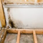 Bathrooms are a common source of mold. Contact K-tech for mold cleaning and be sure it's all gone.
