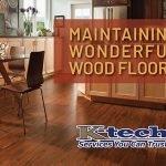Maintaining Wood Floors Blog Image