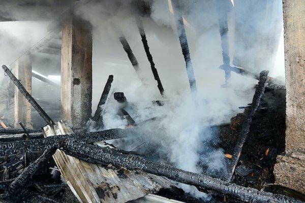 smoke odor removal